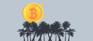 На Каймановых островах возрастает количество Blockchain-компаний