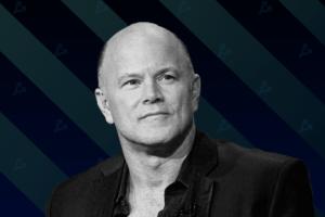 Майк Новограц не считает биткоин подходящим инструментом для платежей