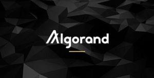 Стартовал проект Algorand, который собрал $60 млн от инвесторов